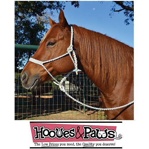 Mule Tape Wide Nose Horse Halter Flat White With Lead