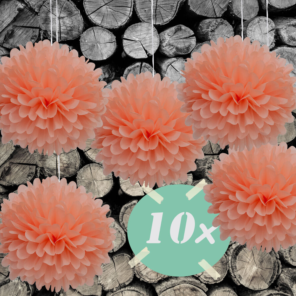 diy pompoms 10er set 30cm hochzeit papierblume pompon aus seidenpapier in lachs ebay. Black Bedroom Furniture Sets. Home Design Ideas