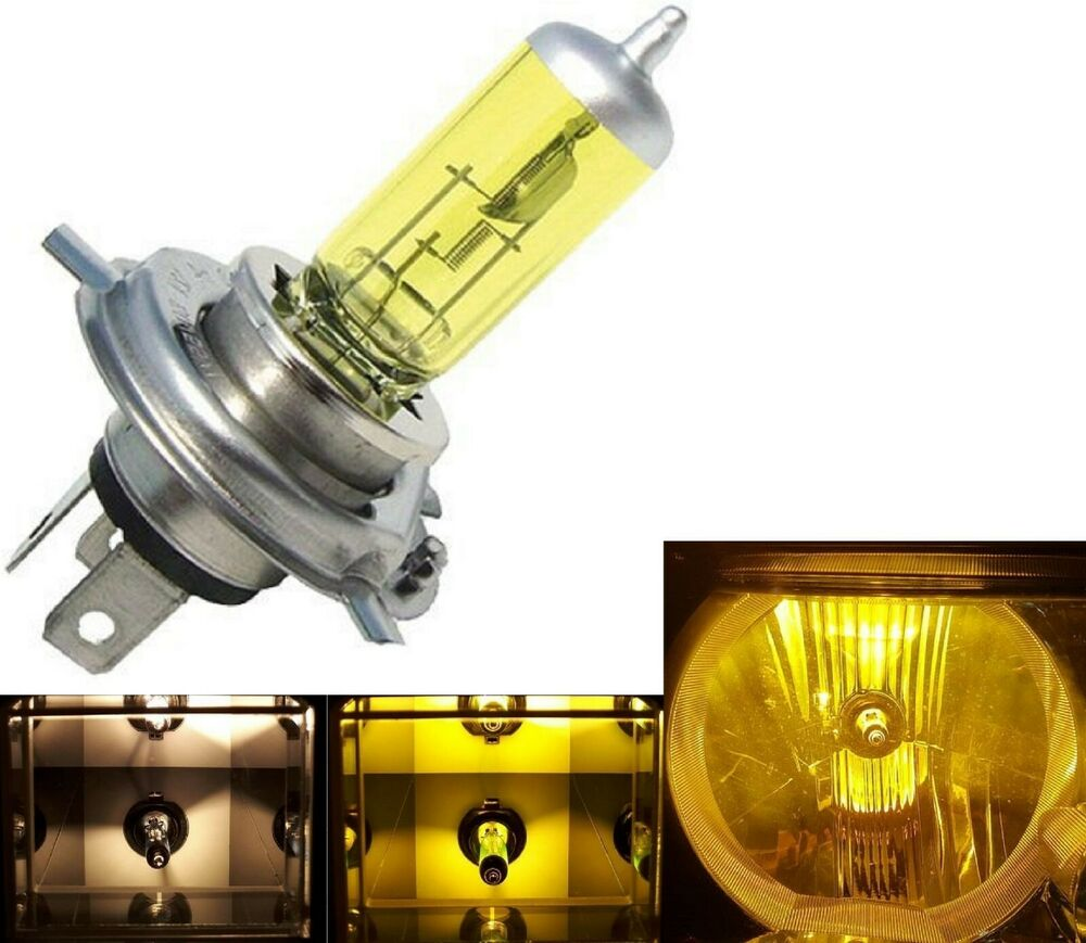 Halogen Hs1 35 35w 3000k One Bulb Head Light Plug Play Replacement Halogen Lamp Ebay