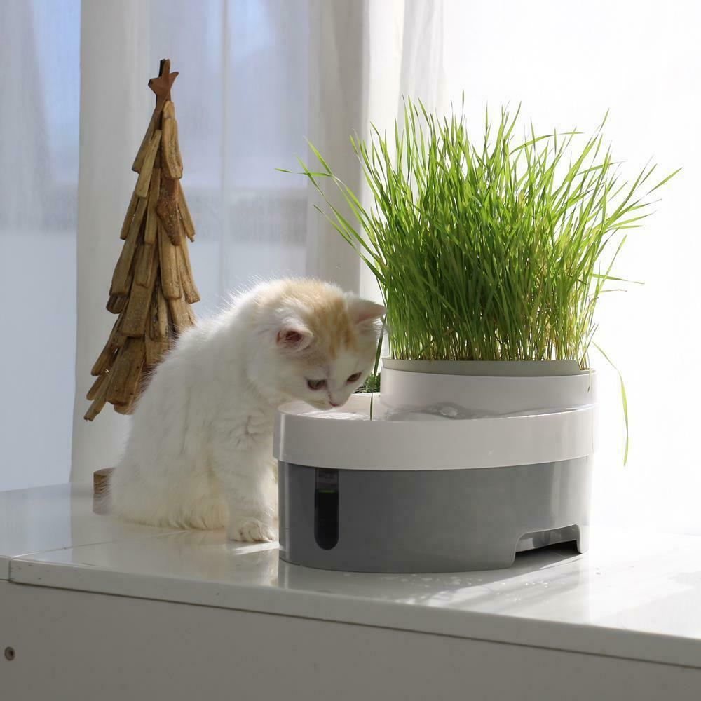 Automatic Pet Fountain Watering Drink Bowl Dog Cat Water