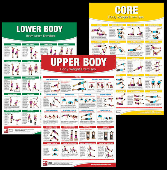 Weight Lifting Gym Fitness Workout Exercise Training Body: BODY WEIGHT EXERCISES Professional Fitness Gym Workout