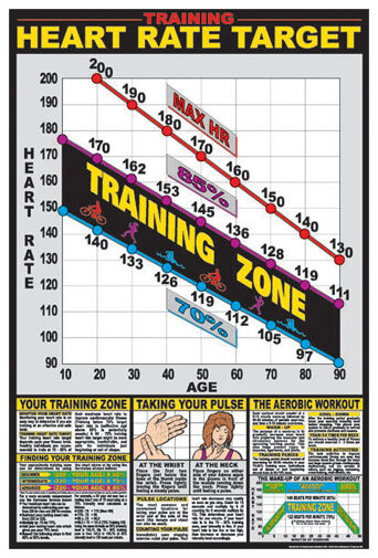 Cardiovascular Fitness Target Heart Rate Health Club Gym Wall Chart