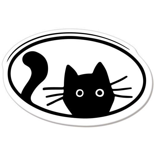 "Cat Peeking Meow Pet Cute Car Bumper Sticker Decal 5"" X 3"
