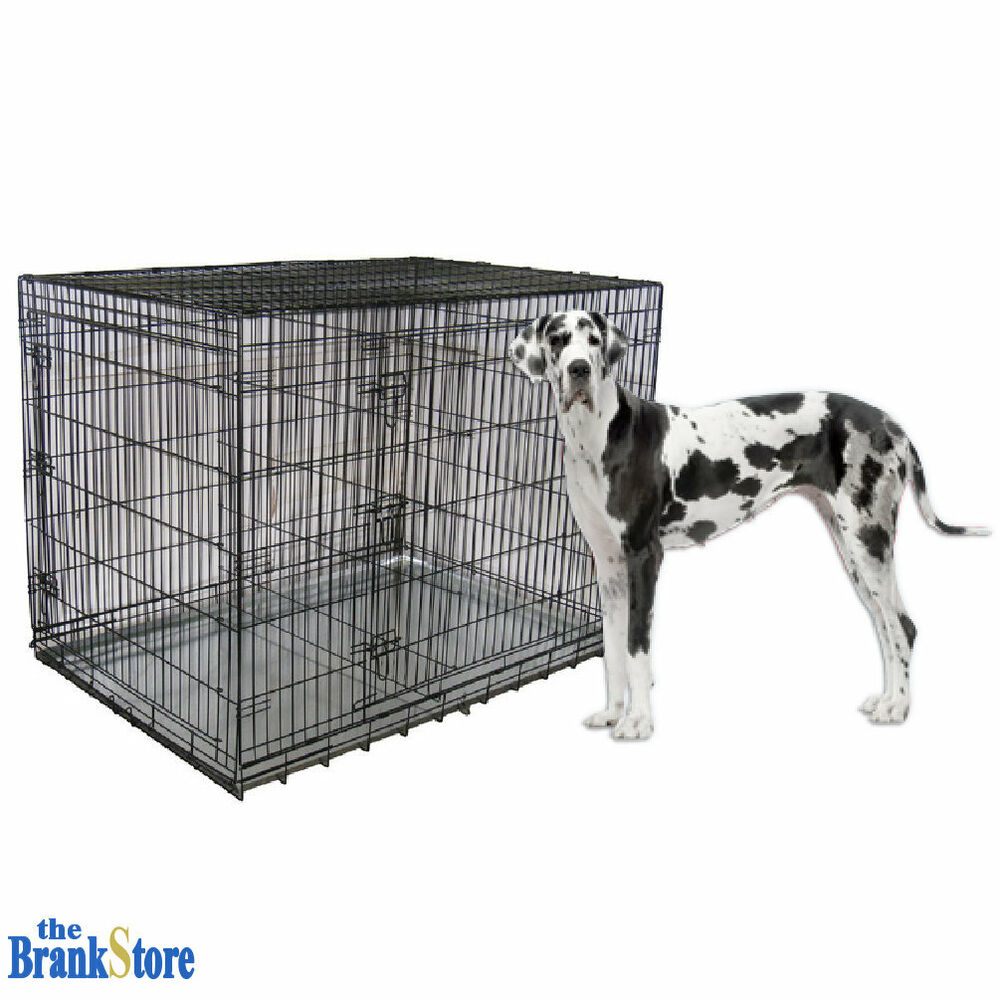 Large Dog Crate Xxl Kennel Extra Huge Folding Pet Wire
