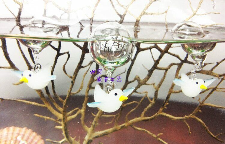 Seagull aquarium floating blown glass bubble micro fish for Micro fish tank