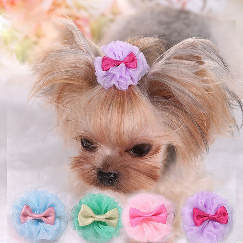 Hair Accessories For Yorkie Poos | yorkie bows dog hair