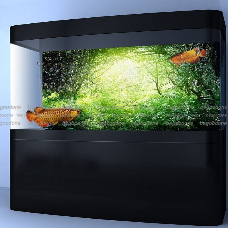 Green forest aquarium poster fish tank background pp green for Fish tanks for sale ebay