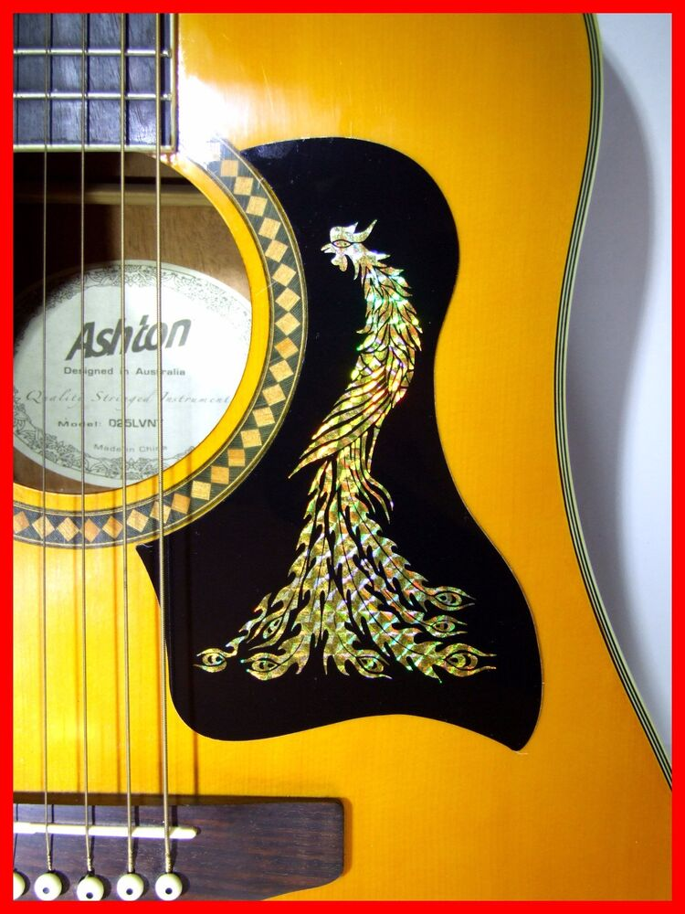 acoustic guitar pickguard scratchplate self adhesive gold phoenix design ebay. Black Bedroom Furniture Sets. Home Design Ideas