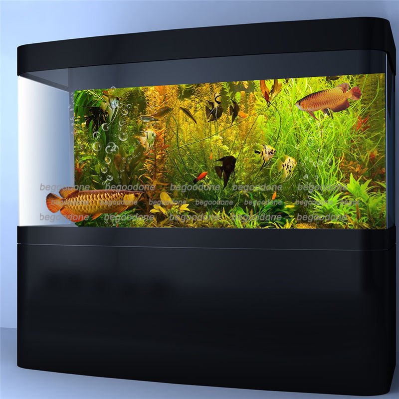 Aquarium background poster hd aquatic fish tank wall for Aquarium background decoration