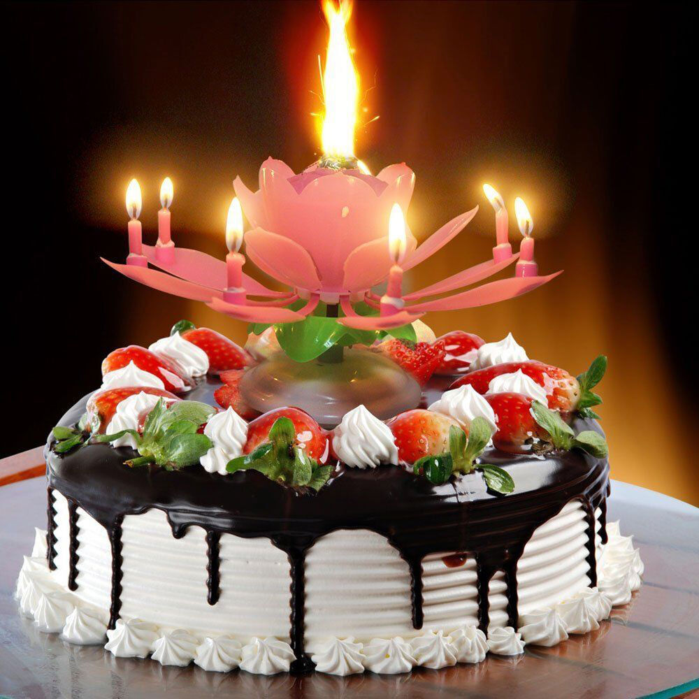 Details About UK 8Candle Rotating Musical Lotus Flower Candles Birthday Cake Topper Gift Light