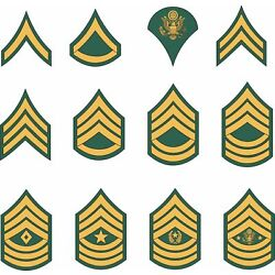 Army Enlisted Rank Insignia stickers