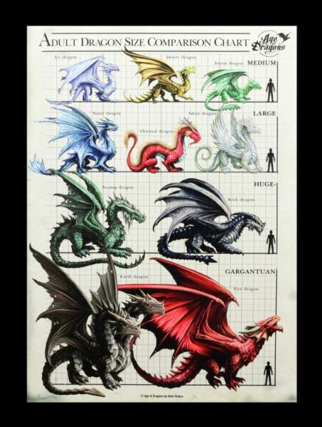 AllemagnePetite Toile - Dragons Tableau des Tailles - anne stokes Fantasie Image Pression