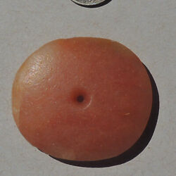 an ancient neolithic 45.5 mm african agate stone bead mali #727