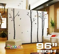 "Wall Decor Decal Sticker Removable 96""  birch bird tree DC0202 single color"