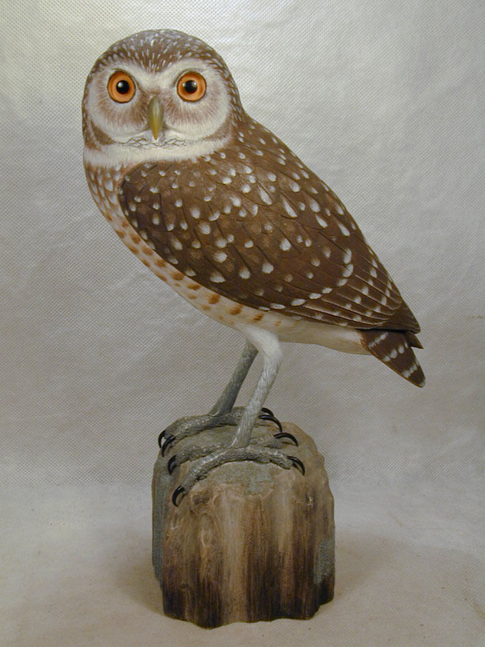 Burrowing owl original wood carving ebay