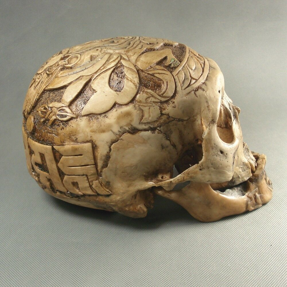 New hand mande kapala carved resin replica human skull