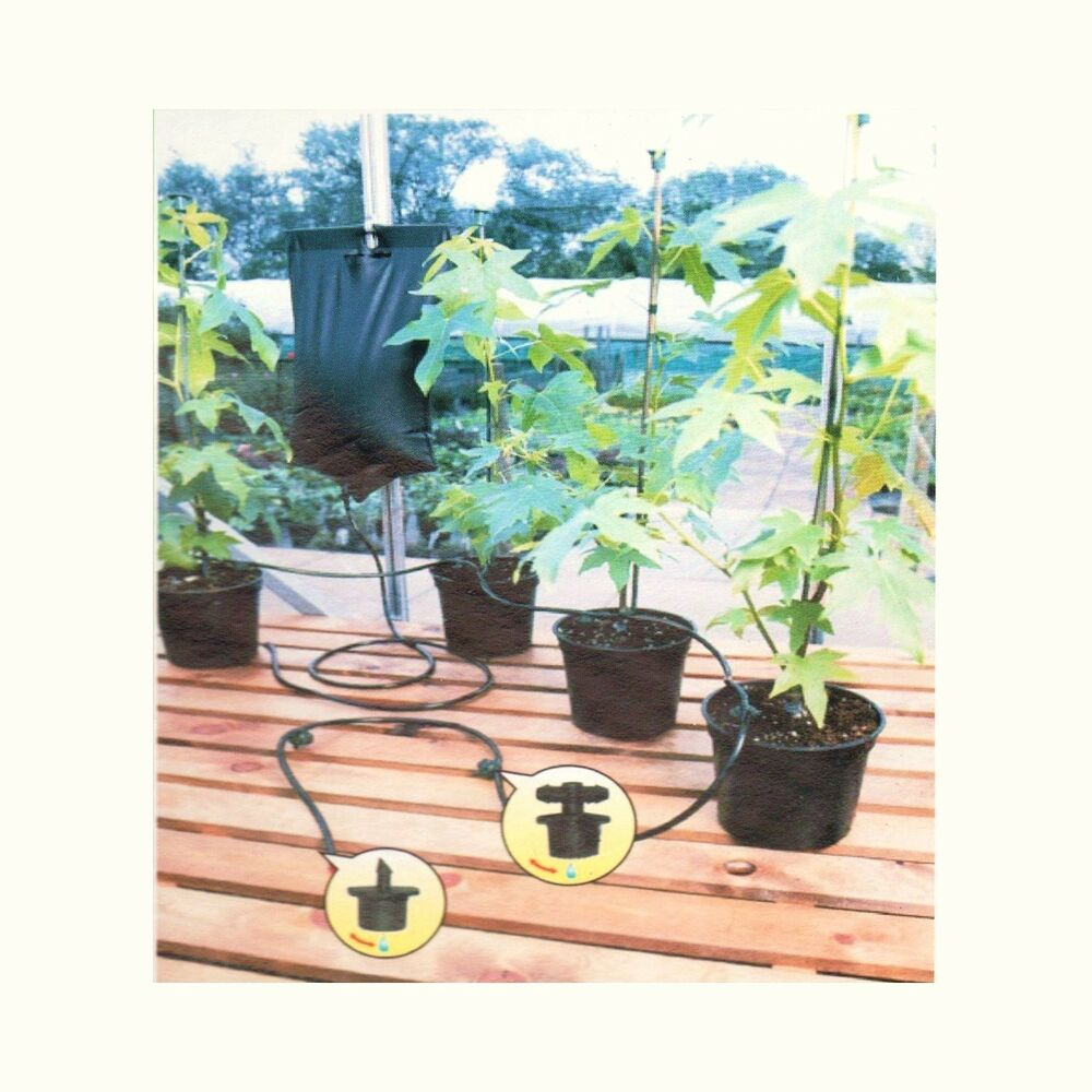 Instant Drip Watering Gravity Fed Irrigation Plants