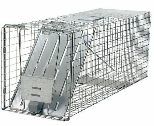 New traps live cage animal pet trap skunk squirrel cat for Modern trap