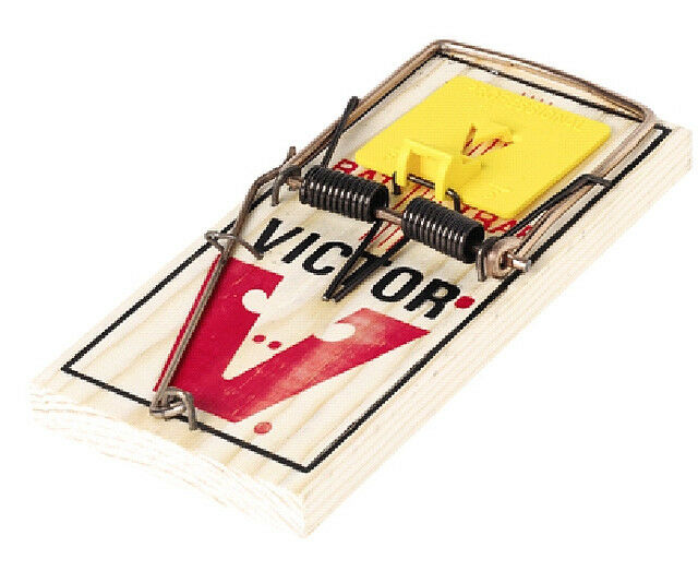 Victor easy set rat traps 6 pack victor rat snap trap quick trapping of rats ebay - Trappen rots ...