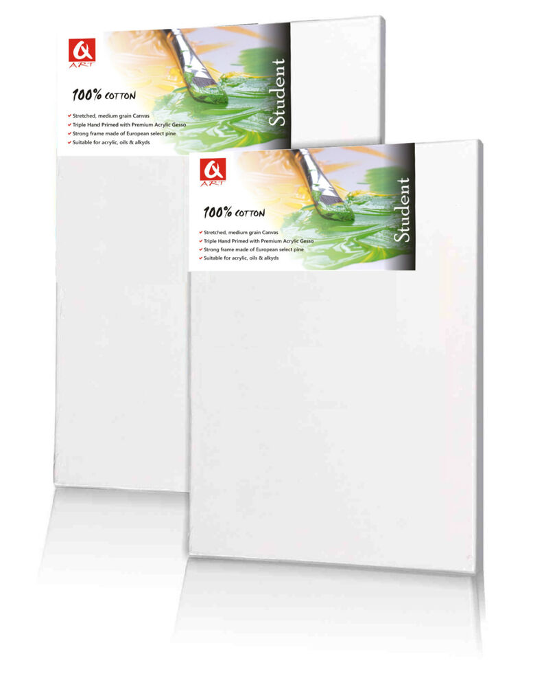 Set of 2x 20x50 cm ( 8x20 inch) BLANK STRETCHED CANVAS GESSO PRIMED ...