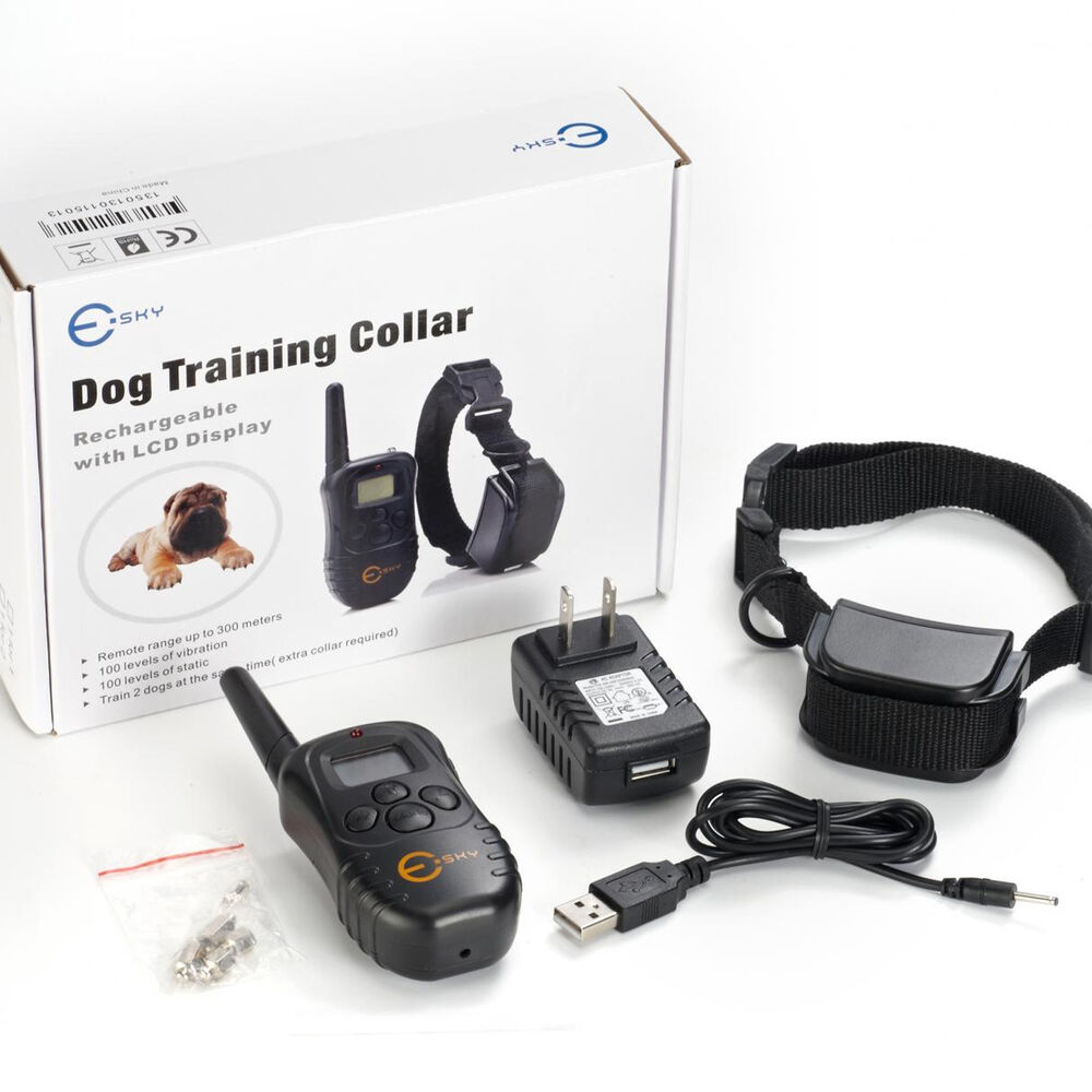 What Is A Good Dog Shock Collar