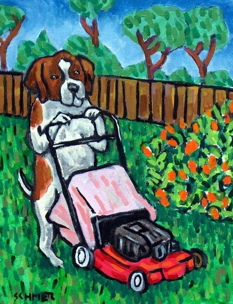 Tractor Mowing Painting : St bernard dog signed art print jschmetz mowing the