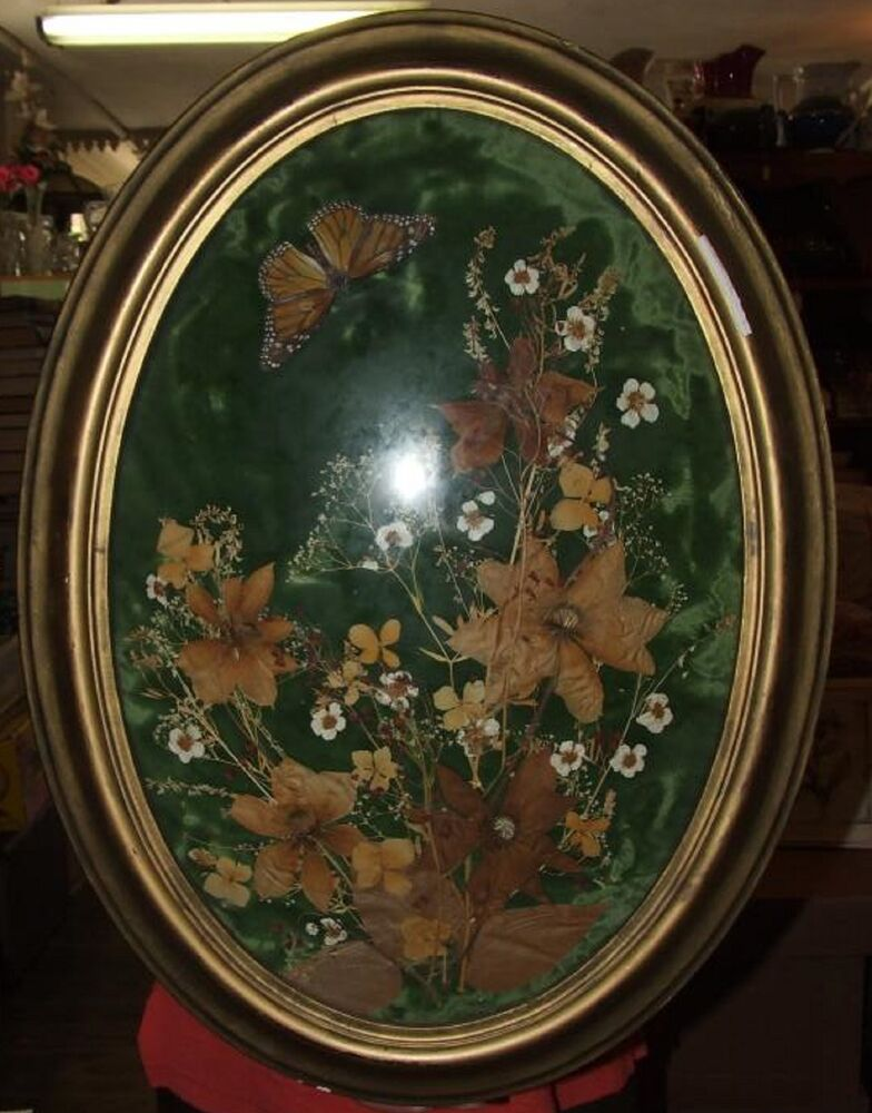 antique victorian convex glass large dried flower arrangement oval gilt frame