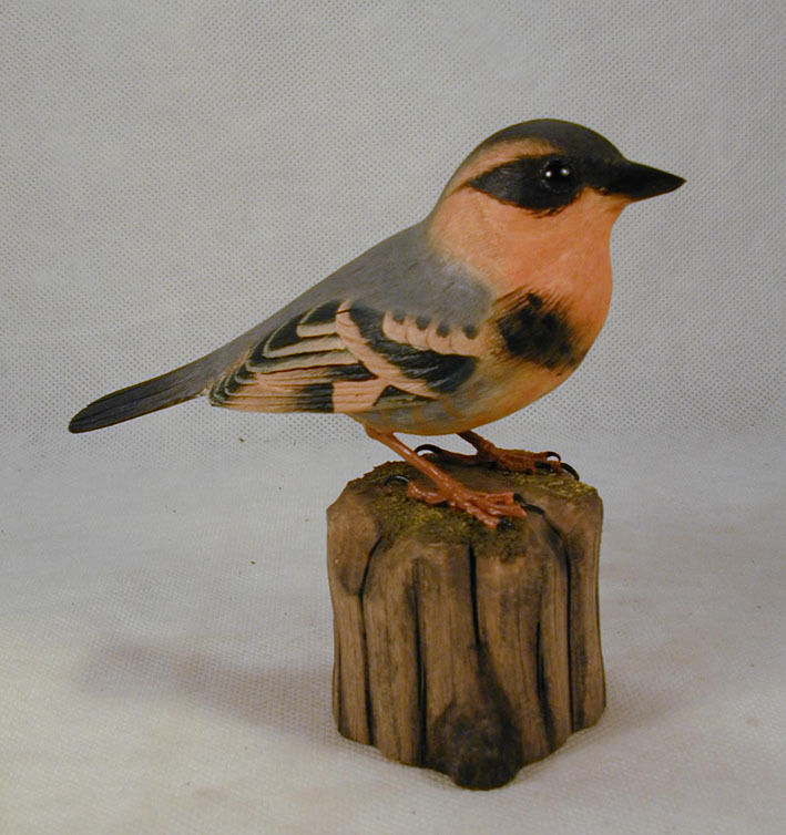 varied thrush original bird wood carving ebay. Black Bedroom Furniture Sets. Home Design Ideas