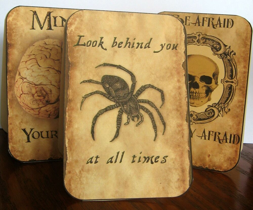 Vintage inspired 8 large halloween spider skull tent cards table