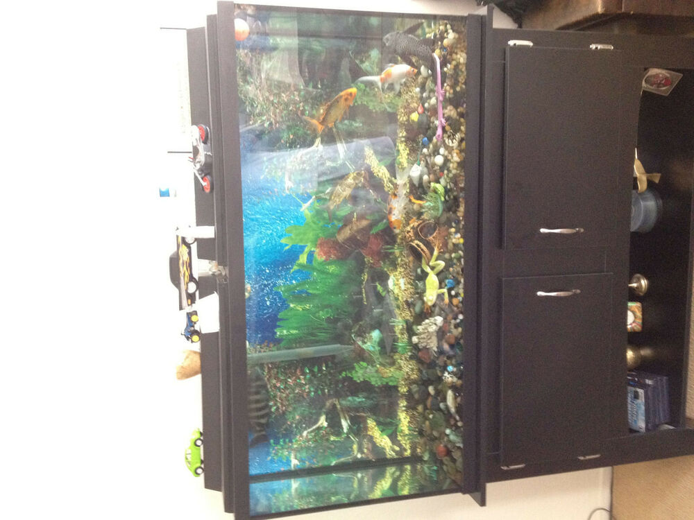 Fish tank plus stand fish included ebay for Fish tanks for sale ebay