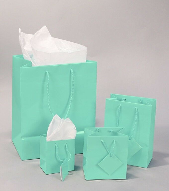 Wedding Gift Bags Ebay : ... GIFT BAGS PARTY SUPPLIES HOLIDAY PAPER GIFT BAGS WEDDING BAGS eBay