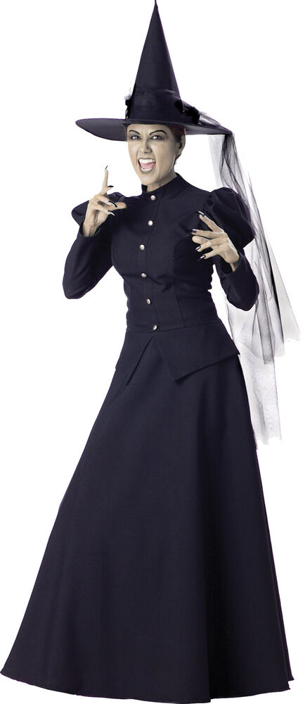 WICKED WITCH ELITE COLLECTION ADULT WOMENS COSTUME Gown ...