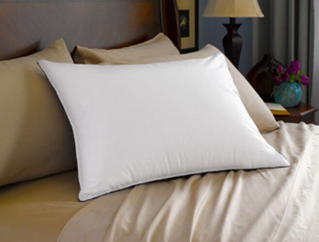 Brand New Pacific Coast Feather Double Down Around Pillows