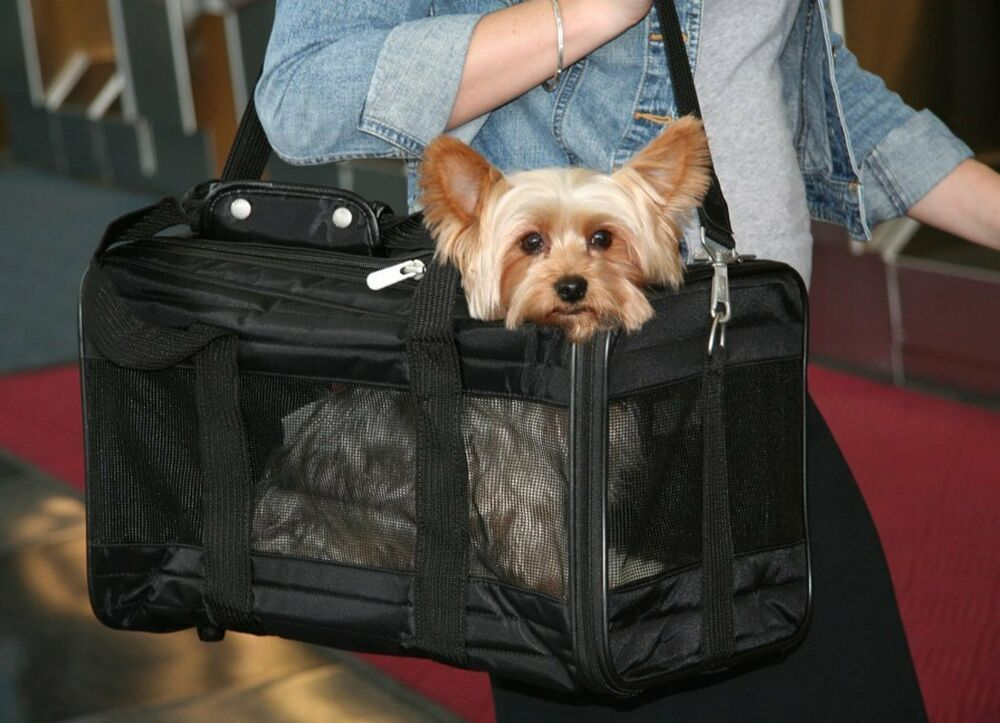Sherpa Large Cat Dog Pet Carrier Crate Airplane Breathable