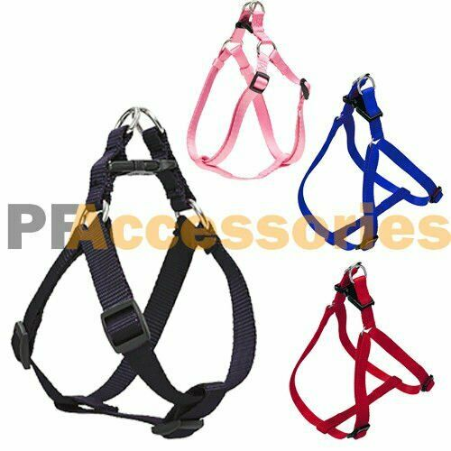 Tracking Harness For Small Dog