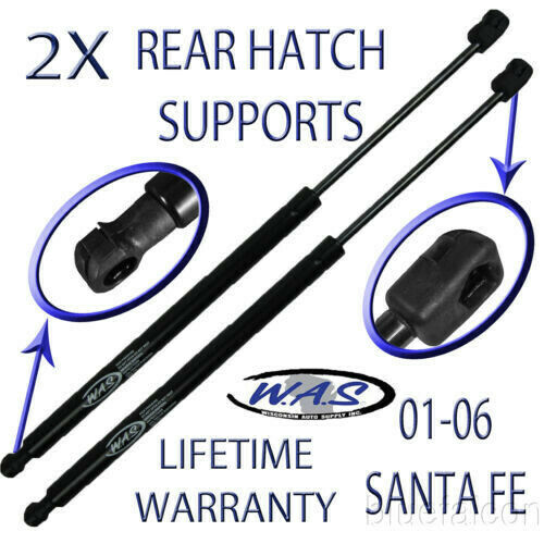 Two Rear Door Hatch Liftgate Tailgate Lift Supports Shock Strut Arm For Santa Fe Ebay