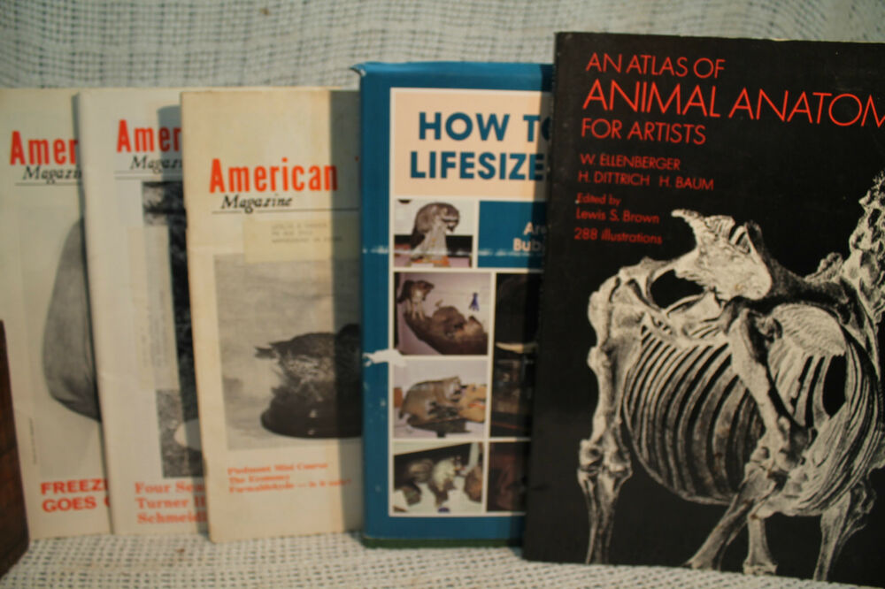 Lot How To Mount Lifesize Animals Vtg American Taxidermist Atlas