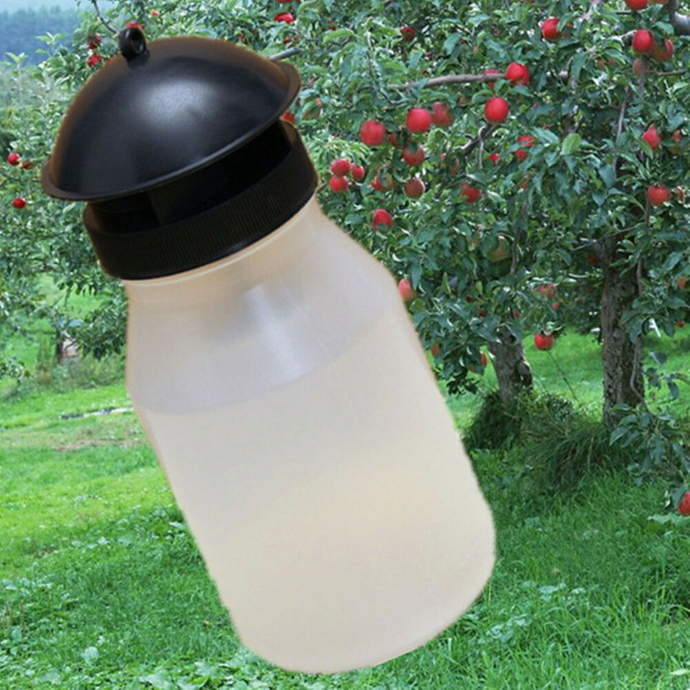 Fruit Fly Trap Pest Control Bottle Bait Lure Gardening ...