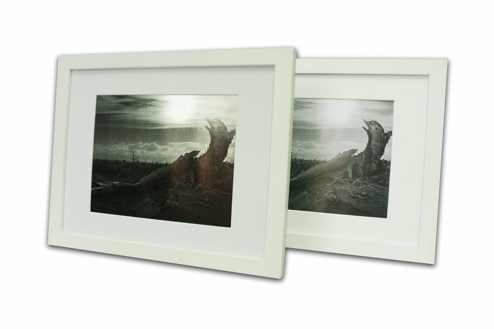 Set Of 2 White Photo Wood Frame 11x14 With Real Glass Mat