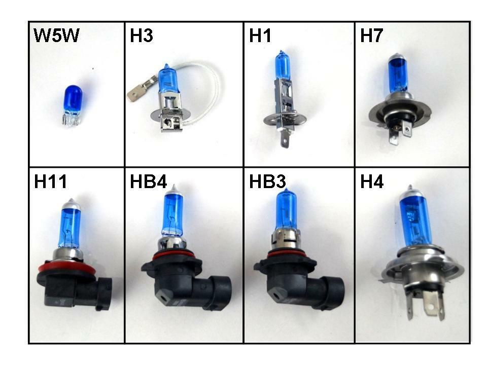 H1 H3 H4 H7 H11 Hb3 Hb4 501 Xenon White Bulbs Light