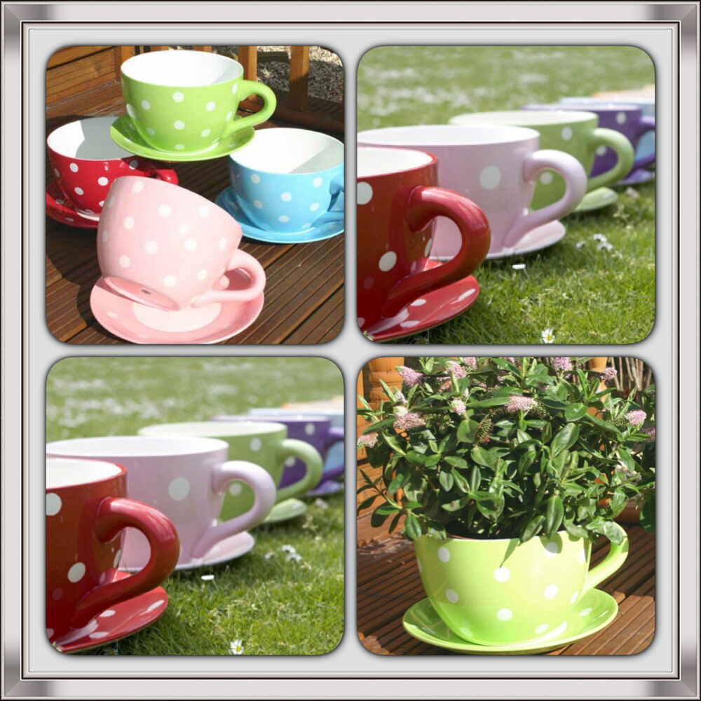 Giant Polka Dot Tea Cup Saucer Flower Plant Pot Planter Blue Green Pink Ebay
