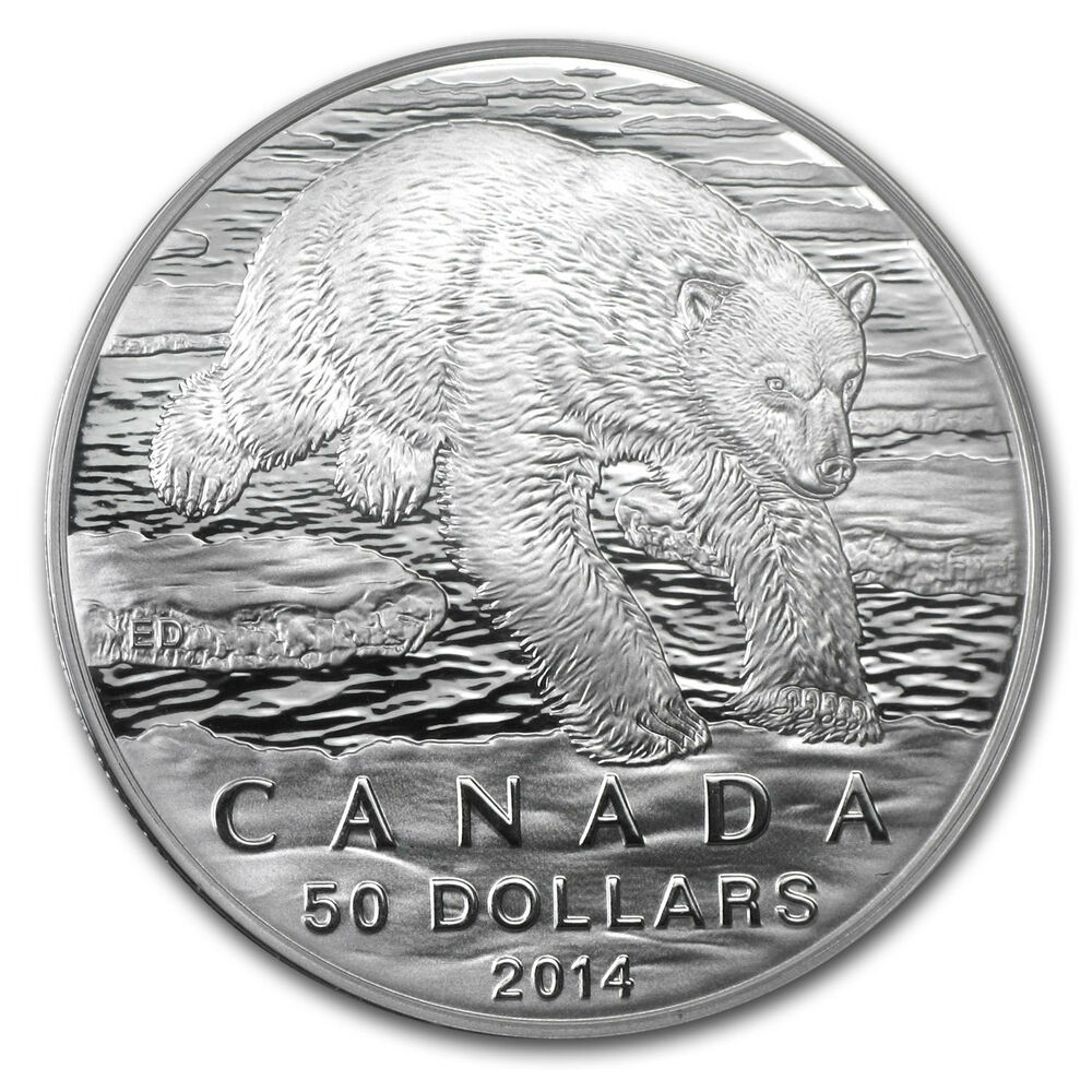 2014 1 2 Oz Silver Canadian 50 Coin Iconic Polar Bear