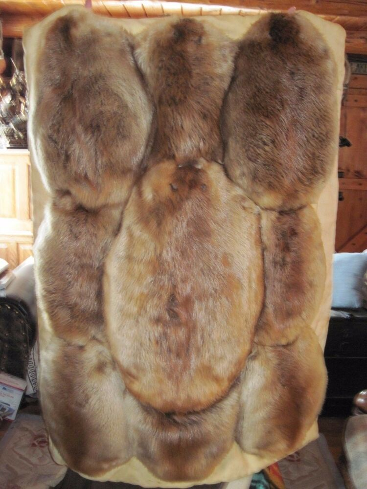 9 Beaver Pelt S Trimmed In Elk Hide And Quilted With