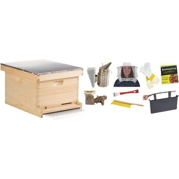 Little giant 10 frame beginner beekeeping bee hive kit ebay - Beekeeping beginners small business ...