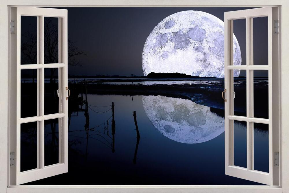 Full Wall Mural Decals: Full Moon Over River 3D Window View Decal WALL STICKER