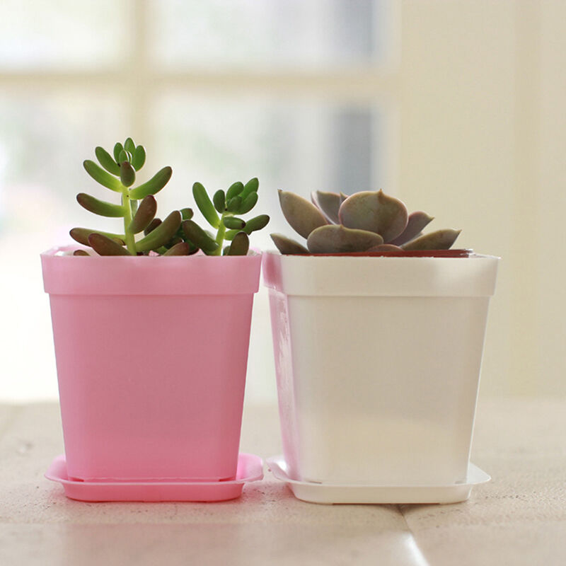 colorful mini plastic square planter flower plant pot with. Black Bedroom Furniture Sets. Home Design Ideas