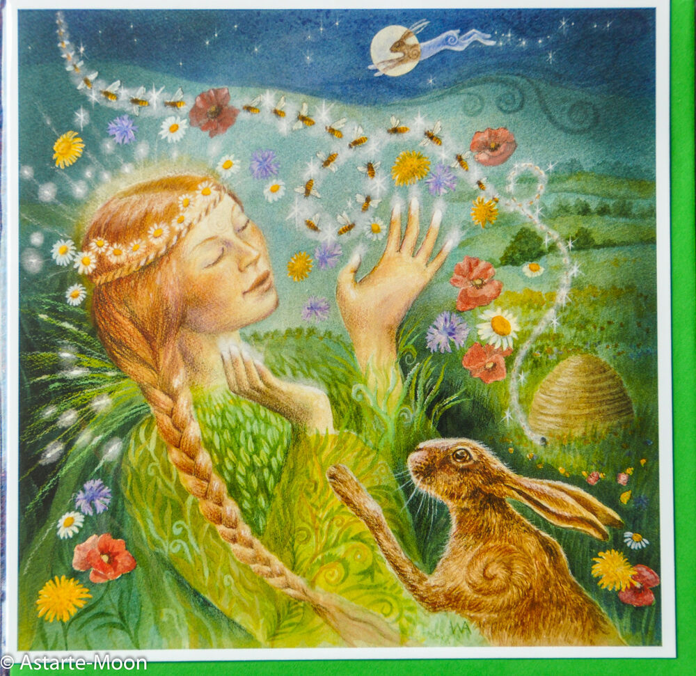 Wendy andrew pagan wicca greetings card bee bliss easter beltane wendy andrew pagan wicca greetings card bee bliss easter beltane birthday hare ebay kristyandbryce Choice Image