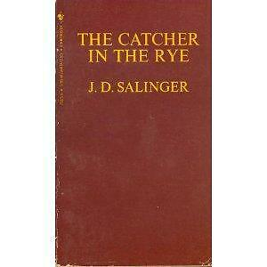 a comprehensive summary of the novel the catcher in the rye by j d salinger Monarch notes: j d salinger's the catcher in the rye by rozakis, laurie and a great selection of similar used, new and collectible books available now at abebookscom.