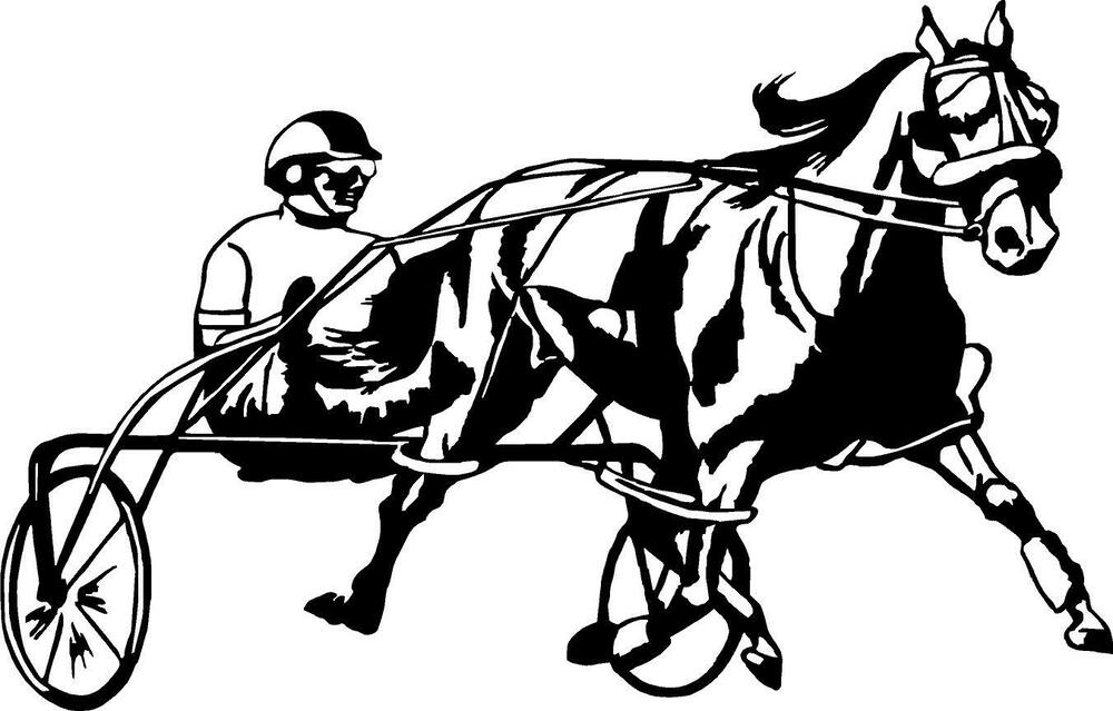 Horse Racing Jockey Track Left Or Right Vinyl Decal Sticker 4792