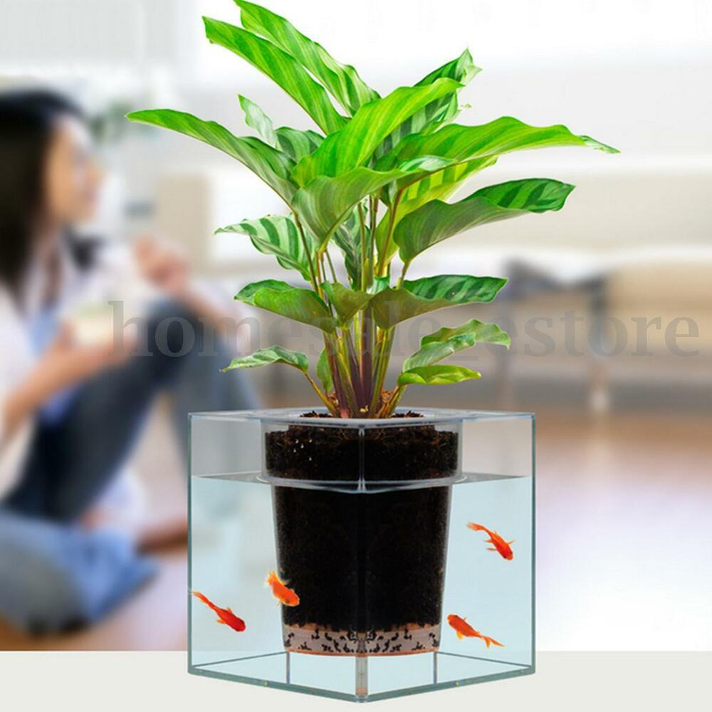 clear aquarium self watering pot planter plant fish tank. Black Bedroom Furniture Sets. Home Design Ideas